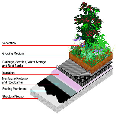 Planning Inclusive Communities Agency Types Of Green Roofs